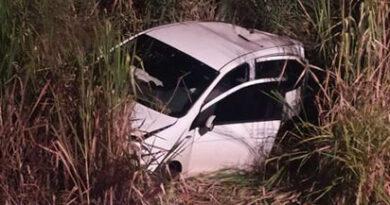 Carro atropela javalis e capota entre Mauá da Serra e Londrina