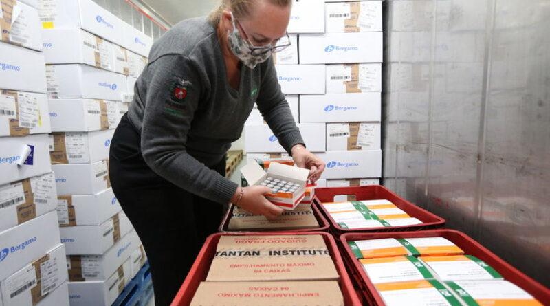 439.430 doses de vacinas contra coronavírus chegam nesta quinta ao Paraná