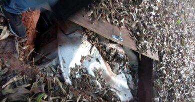 PM encontra 425 kg de crack enterrados no Paraná